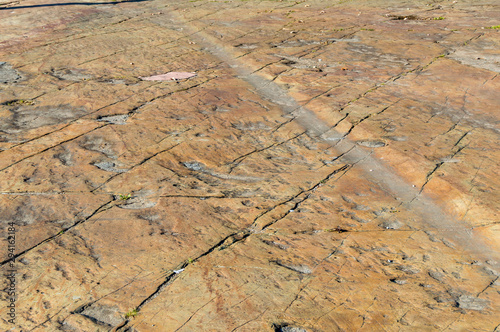 Photo Glacial Striations on exposed Pre-Cambrian Gneiss