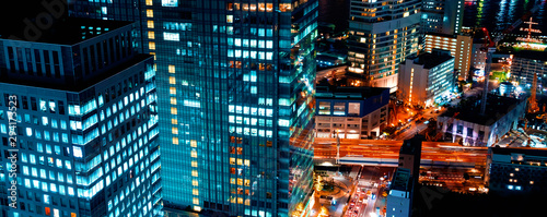 Aerial view of the cityscape of Minato, Tokyo, Japan at night Canvas Print
