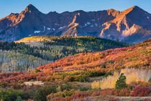 Autumn In The San Juan Mountains Of Colorado. Aspen Trees With Shadows