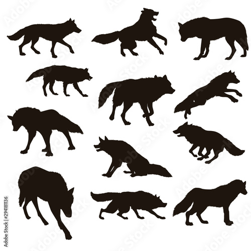 Foto Wolf Silhouettes