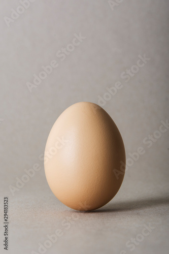 Canvas Print Egg