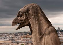 Paris Skyline With Gargoyle