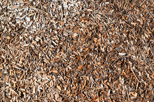 Woodchips Wet Canvas-taulu