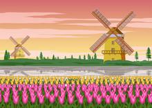 Tulip Garden,famous Symbol Of ...