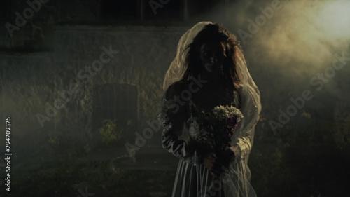 Fotografia Silhouette of a dead bride in the fog. Horror.