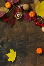 Autumn Backgrounds. Thanksgivi...