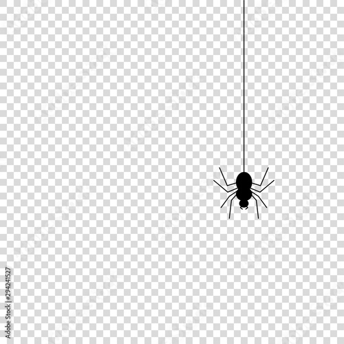 Photo Spider icon mock up vector illustration isolated