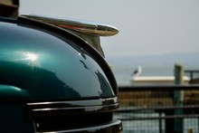 Dark Green Shiny Car And Seagu...