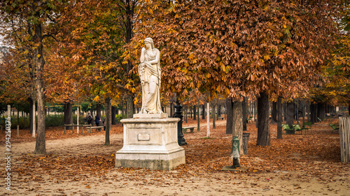 Poster Paris Alley of the Jardin des Tuileries covered with orange autumn leaves, statue in the Tuileries garden in Paris France on a beautiful Fall day