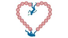 Evolution Vector Illustration. Human And Chimpanzee Genome Identical