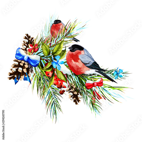 Illustration of snowed fir branch with berry and bullfinches on it Canvas Print