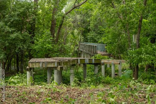 Fotografia, Obraz  Abandoned old concrete bridge invaded by forest