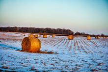 Hay Bales In Winter Field