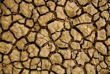 Global Climate Change Example: Cracked Dry Perched Fluvial Soil.