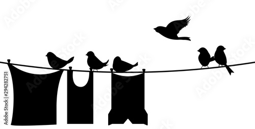 Blank paper sheet on clothesline with clothespins and bird Canvas Print