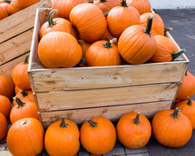 Halloween Pumpkins In A Wooden Crate In A Grocery Store