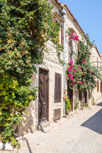 Tableau sur Toile Stone houses covered with bougainvillaea,
