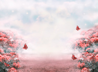 Fototapeta Romantyczny Fantasy summer photo background with roses flowers field, butterflies and misty path leading to fairytale glade. Idyllic tranquil morning scene, road goes across hills, empty copy space.