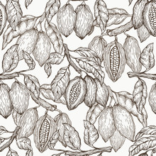 Cocoa Vector Seamless Pattern....
