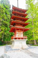 The Japanese Tea Garden In The Golden Gate Park.