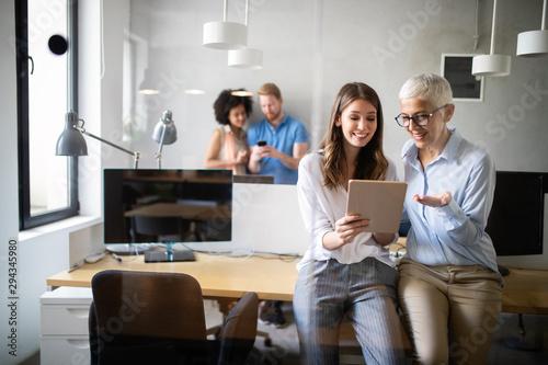 Fototapeta Programmer working in a software developing company office obraz na płótnie