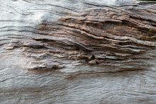 The Texture Of The Old Wooden ...