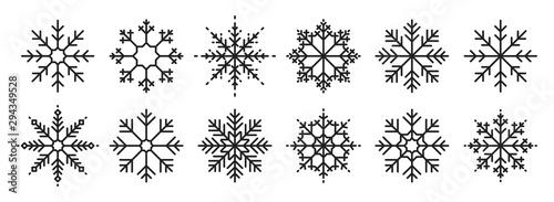 Snowflakes big set icons Canvas Print