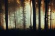 Leinwanddruck Bild dark mysterious woods background, misty forest at night
