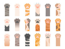 Pets Paw. Wild Cats Different ...