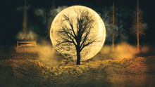 Halloween Background With Bright Moon And Autumn Silhouette Trees.