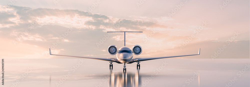 Fototapety, obrazy: Business class travel concept, luxury private jet at sunset or sunrise. 3D illustration.