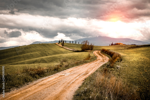 Obraz Mood fall photo of Tuscany and free space for your decoration  - fototapety do salonu