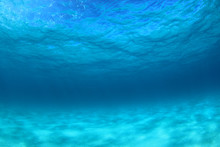 Underwater Background Of Clear Blue Water On Sandy Sea Floor