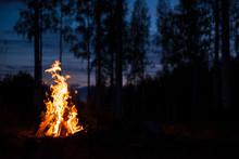 Burning Campfire On A Dark Nig...