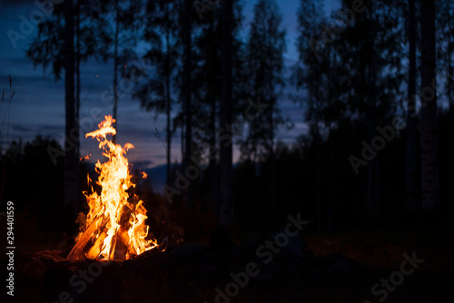 Obraz Burning campfire on a dark night in a forest. Twilight sky and trees in the background. - fototapety do salonu