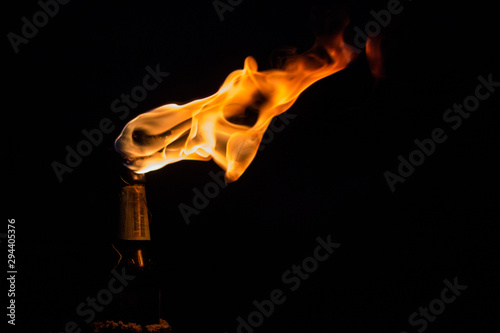 fuego en atorcha Canvas Print