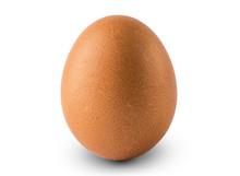 Egg Isolated