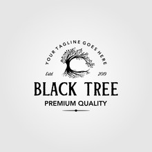 Vintage Olive Tree Logo Retro ...