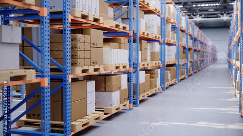 Obraz Warehouse with cardboard boxes inside on pallets racks, logistic center. Huge, large modern warehouse. Warehouse filled with cardboard boxes on shelves, boxes stand on pallets, 3D Illustration - fototapety do salonu