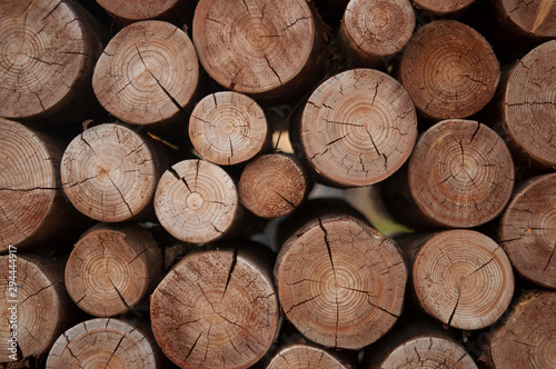 Recess Fitting Firewood texture Pile of wood logs stumps for winter