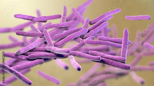 Stampa su Tela Mycobacterium leprae bacteria