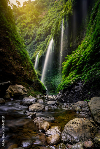 Poster Forest river The Madakaripura waterfall on Java, Indonesia