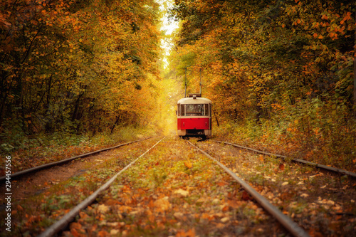 Montage in der Fensternische Eisenbahnschienen red retro tram in magical deep sunny colorful forest. amazing natural autumn background