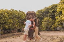Man And A Woman By A Gray Elephant