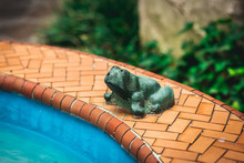 Outdoor Green Frog Decor By Pool