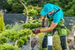Leinwandbild Motiv Trimming Backyard Garden Plants