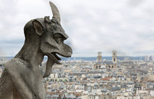 Monster In The Basilica Of Notre Dame De Paris In France