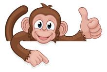 A Monkey Cartoon Character Ani...
