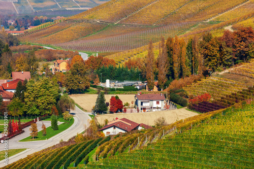 Rural houses among autumnal vineyards in Italy. Canvas