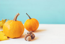 Mini Pumpkins With Yellow Fall...